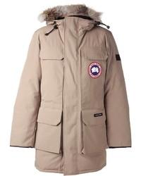 Canada goose medium 176865