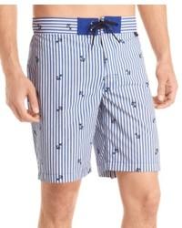 Голубые шорты в вертикальную полоску