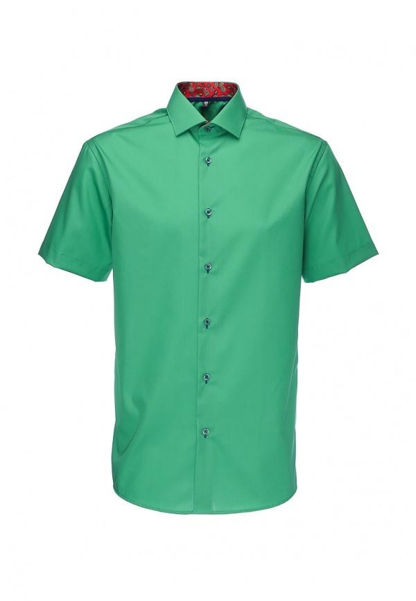 картинки рубашек зеленых