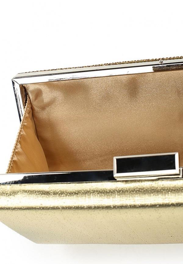 895cabc249a5 Золотой клатч от Michelle Moon, 2 330 руб. | Lamoda | Лукастик