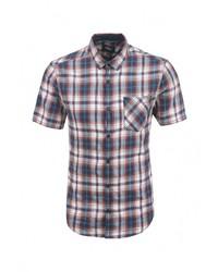 Мужская разноцветная рубашка с коротким рукавом от s.Oliver Denim