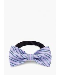 Мужской светло-фиолетовый галстук-бабочка с принтом от Casino