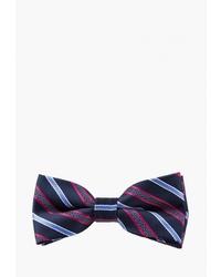 Мужской темно-синий галстук-бабочка в вертикальную полоску от Churchill accessories