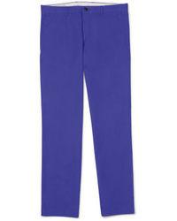 Фиолетовые классические брюки