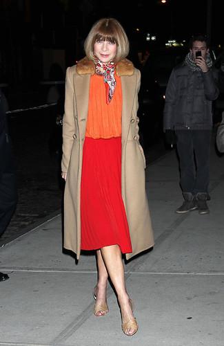 пальто с меховым воротником блузка с длинным рукавом юбка миди сандалии на плоской подошве шарф large 13297